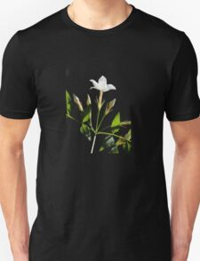 Close Up Of Jasminum Officinale Isolated On Black Unisex T-Shirt