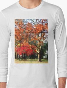 Autumn Sycamore Tree Long Sleeve T-Shirt