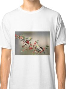 Goldfinches in Yaupon Holly Tree Classic T-Shirt