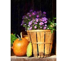 Basket of Asters With Pumpkin and Gourd Photographic Print