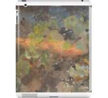 Summer Pond 2 iPad Case/Skin