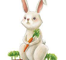 Little rabbit by elisaferreira