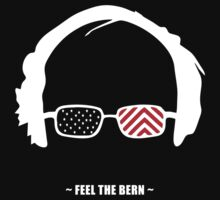 Feel the Bern! by Luxnewhope