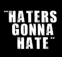 Hater Gonna Hate by Luxnewhope