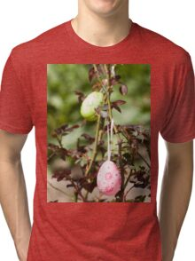 Decorated easter eggs Tri-blend T-Shirt