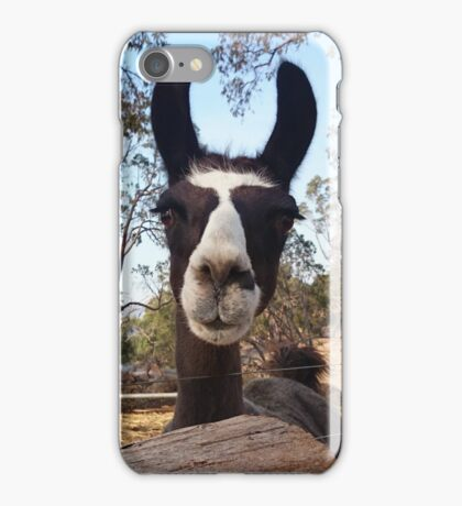 Llama 'Harz' iPhone Case/Skin