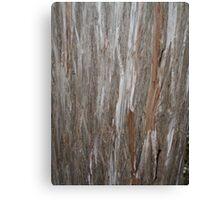 Raw Wood Canvas Print