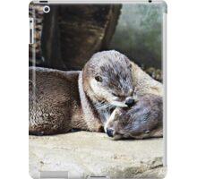 Playful Otters iPad Case/Skin