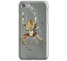 Itsy Bitsy Spider pt 2 iPhone Case/Skin