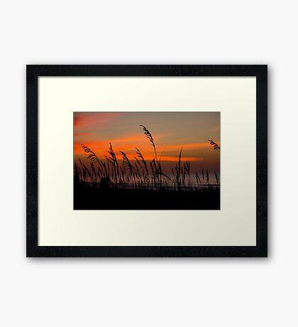 Blustery Beach Framed Print