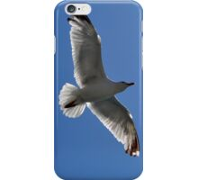 Blue skies and sea birds  iPhone Case/Skin