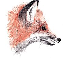 Foxy Fella by laurenpanda12