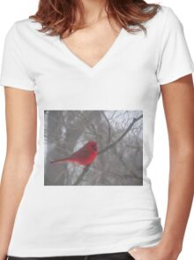Cardinal Calm in Chaotic Conditions Women's Fitted V-Neck T-Shirt