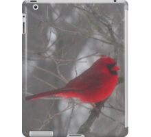 Cardinal Calm in Chaotic Conditions iPad Case/Skin