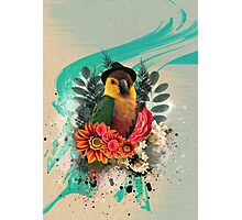 Cool Parrot Photographic Print