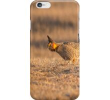 Prairie Chicken 2013-15 iPhone Case/Skin