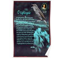O Nightingale Poster