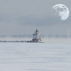 Harbour Moon by Rochelle Smith