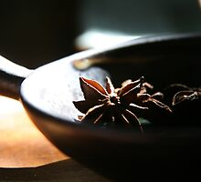 Star Anise  by LynnEngland