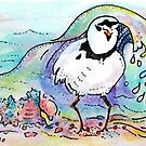 Here comes the Piping Plover by Robin Monroe