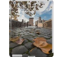 Low point of view iPad Case/Skin