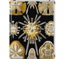 Macro Sea Creatures Sea Urchins iPad Case/Skin