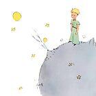 The Little Prince by Marcuccio