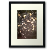 Frozen Flowers Under Ice Framed Print