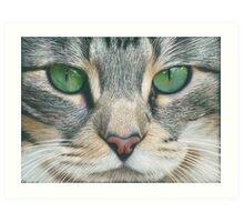 Emerald Eyes Scratch Art Art Print