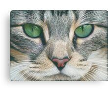 Emerald Eyes Scratch Art Canvas Print