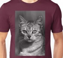 """Chat - Cat """" Peluche """" 04 (c)(h) ) by Olao-Olavia / Okaio Créations 300mm f.2.8 canon eos 5 1989    Unisex T-Shirt"""