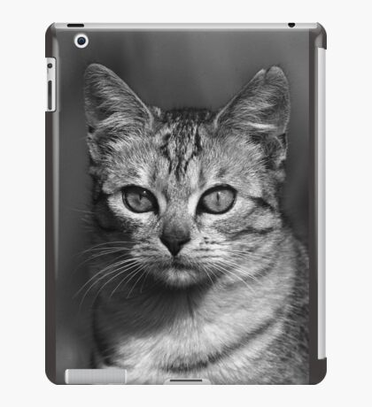 """Chat - Cat """" Peluche """" 04 (c)(h) ) by Olao-Olavia / Okaio Créations 300mm f.2.8 canon eos 5 1989    iPad Case/Skin"""