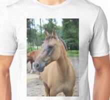 Leo - Take 2 Unisex T-Shirt