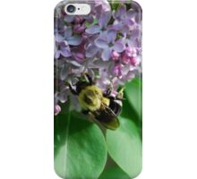 Collecting Nectar from the Lilacs iPhone Case/Skin