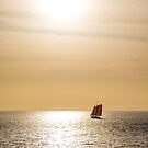 Red Sails in Gold Light by dbvirago