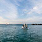 Sailing Away by dbvirago