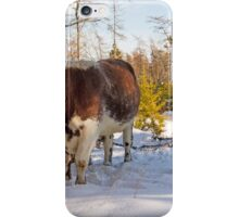 Oxen Working in the Woods iPhone Case/Skin