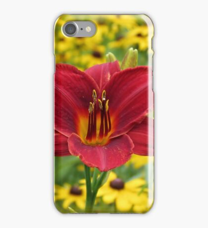 Scarlet Gold - Daylily with Rudbeckia iPhone Case/Skin