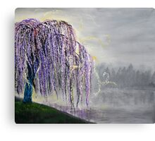 Magic Willow Canvas Print