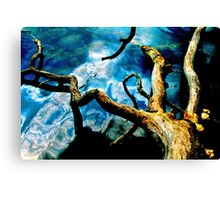 Out on My Own Limb Canvas Print