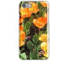 Unusual gold & orange tulips iPhone Case/Skin