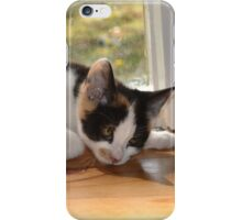 Funny as iPhone Case/Skin