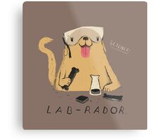 lab-rador Metal Print