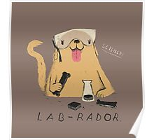 lab-rador Poster