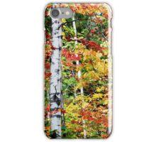 Autumn's Glory iPhone Case/Skin