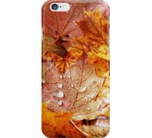 The Fallen iPhone Case/Skin