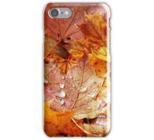 The Fallen iPhone Case/Skin