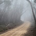 Misty Road by Geoff Smith