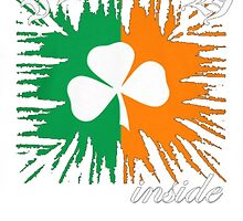 Irish Inside by HotTShirts