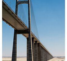 Suez Canal Bridge by Tony Steinberg